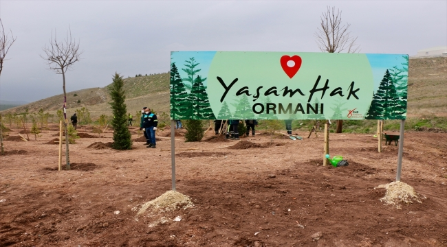 """Eskişehir'de CHP Kadın Kolları tarafından """"Yaşam Hak Ormanı"""" oluşturuldu"""