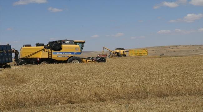 Yozgatlı çiftçiler toprak işlemesiz tarımla kuraklığın etkilerini en aza indirmeye çalışıyor